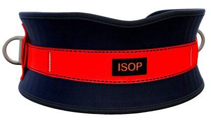Cinturón de seguridad con almohadilla para la cadera 3