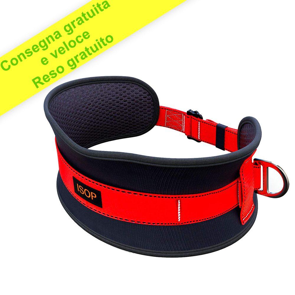 Cintura di sicurezza con imbottitura per l'anca con Gancio - Cintura Anticaduta per Uomo Donna - 2d Anelli - Dimensione Universale
