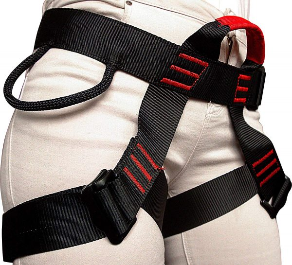 harness1