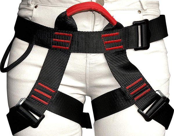 harness3
